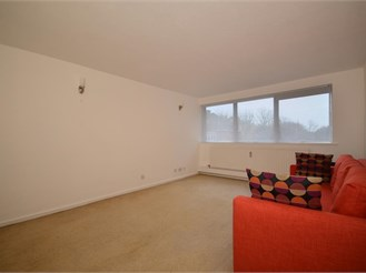 1 bedroom flat in