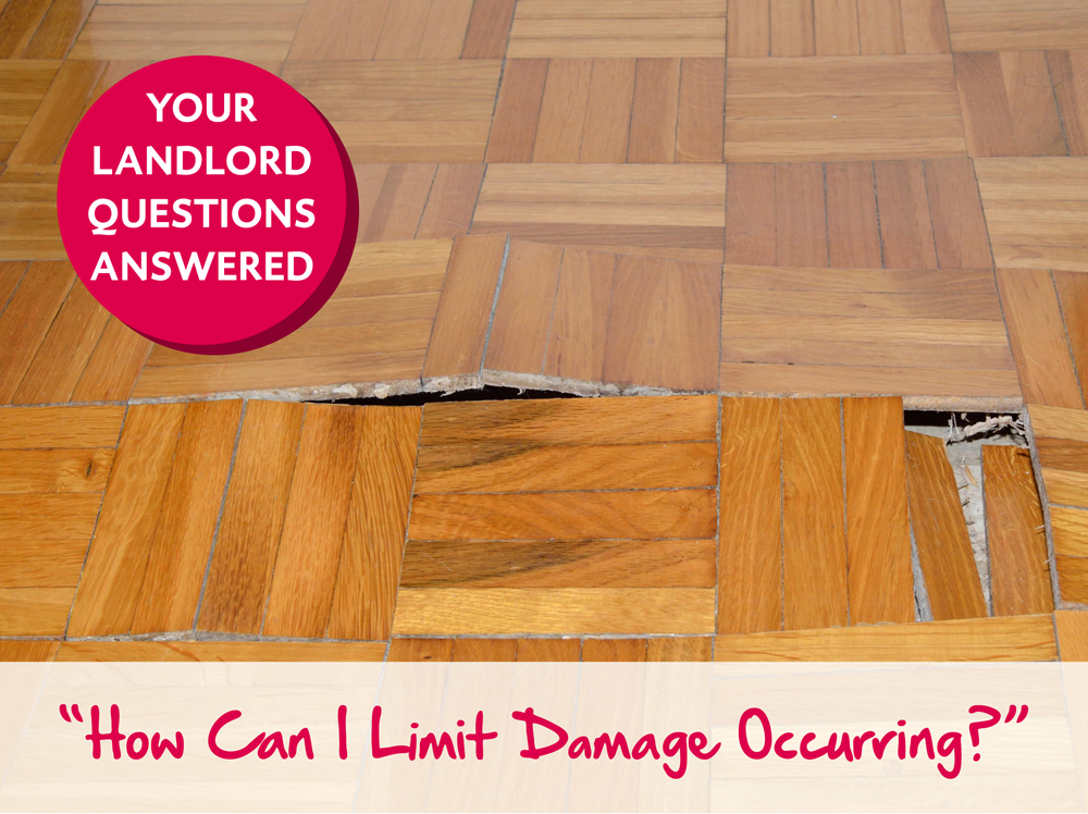 Your Landlord Questions Answered: How Can I Limit Damage Occurring?